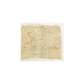 4293 Plasa fina de inox, 100x50mm, Amati